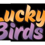Lucky Birds — обзор и история создания