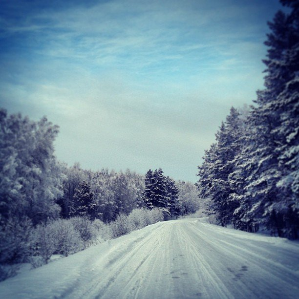 Сибирь. Фото: vasilevsky72