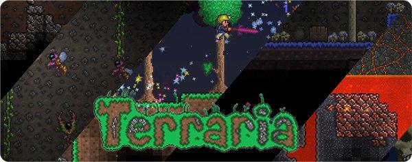 igrat-v-terraria-cherez-hamachi_1